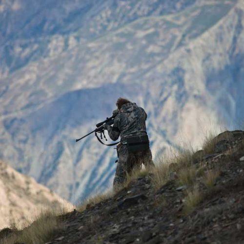 Asiccaza reclama al Gobierno que la caza sea declarada actividad esencial