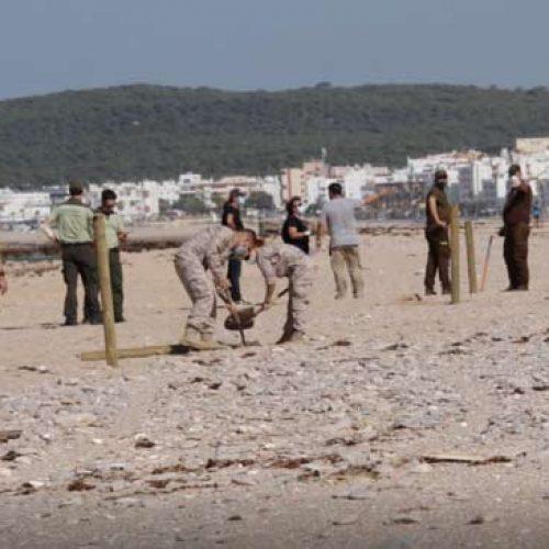 Cazadores de Barbate colaboran en una campaña de protección del Chorlitejo Patinegro