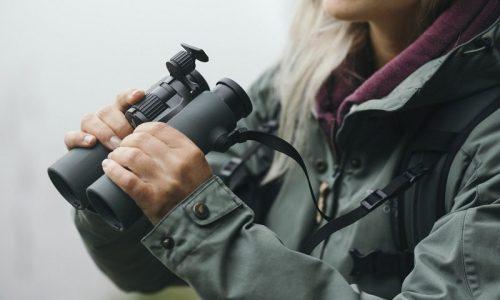 Nuevos binoculares Swarowski Optik, Nature Lover Pure (NL). Uno con la naturaleza