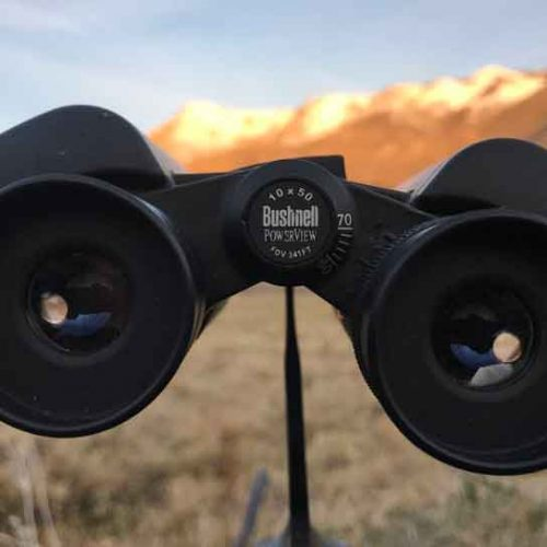 Binoculares Bushnell Powerview y Powerview 2