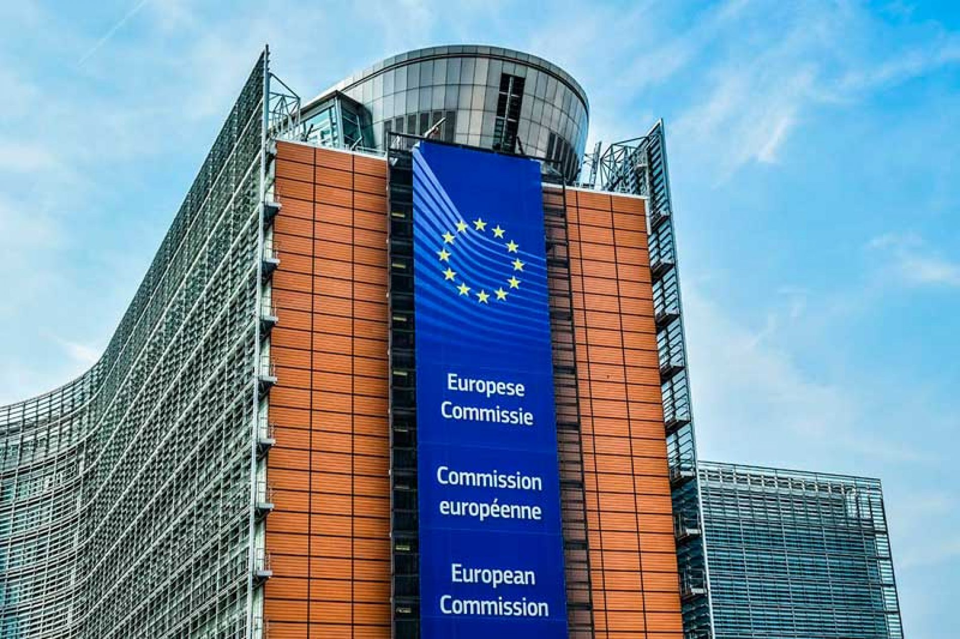El Comité REACH de la CE aprueba la modificación del reglamento que pondría en jaque a la caza en España