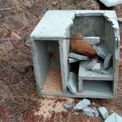 La Federación de Caza condena los actos vandálicos en Nules y otros cotos de caza de Castellón