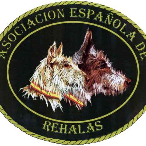 Recomendaciones de la asociación española de rehalas frente al COVID-19. Temporada 2020-2021