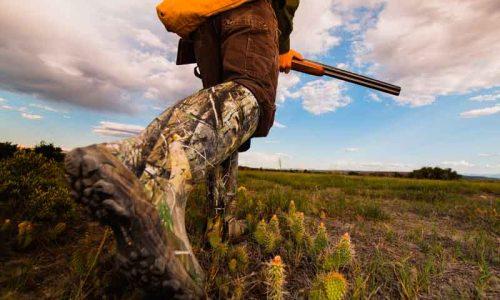 Ayuntamientos de Monfragüe apoyan el cambio de la Ley de Parques Nacionales para permitir la caza sostenible
