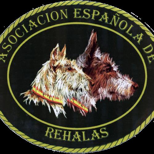 Nueva ley de bienestar animal en Castilla-La Mancha