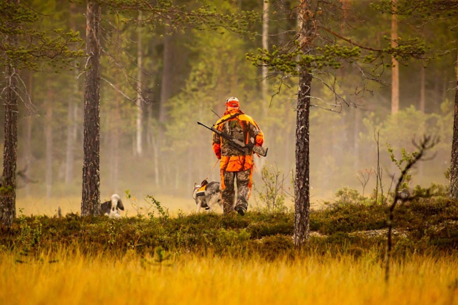 67 entidades representativas del mundo rural reclaman al Gobierno que declare la caza como actividad esencial