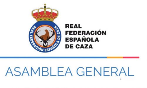 La RFEC celebra su Asamblea General Ordinaria 2020 de forma telemática