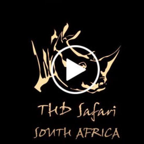En Directo desde la Sabana con The Hunter´s Dream Safari
