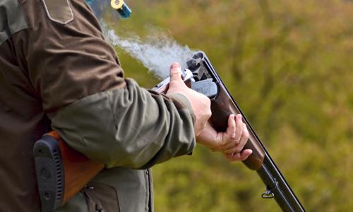 La RFEC pide a los cazadores participar en el estudio sobre el impacto socioeconómico de la prohibición de la munición de plomo