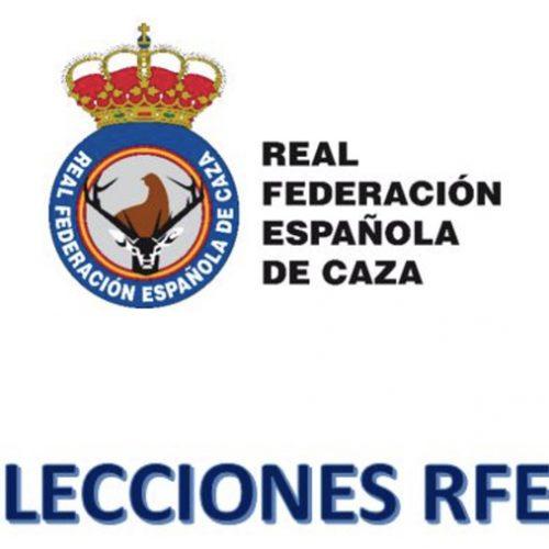 La Comisión Gestora de la RFEC convoca la Asamblea Constituyente para el próximo viernes, 29 de enero