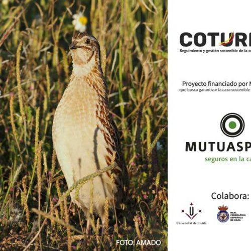 El proyecto Coturnix recoge más de 10.000 muestras gracias a cazadores de toda España