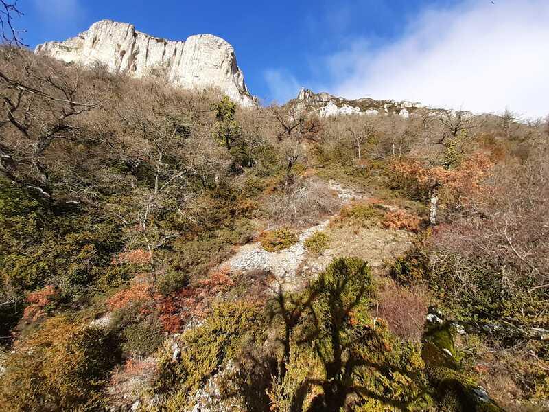 Coto de la Sierra de Lokiz - Miguel Iñigo Noain