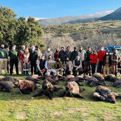 El Real Club de Monteros celebra su IX Montería Anual en Villatoro
