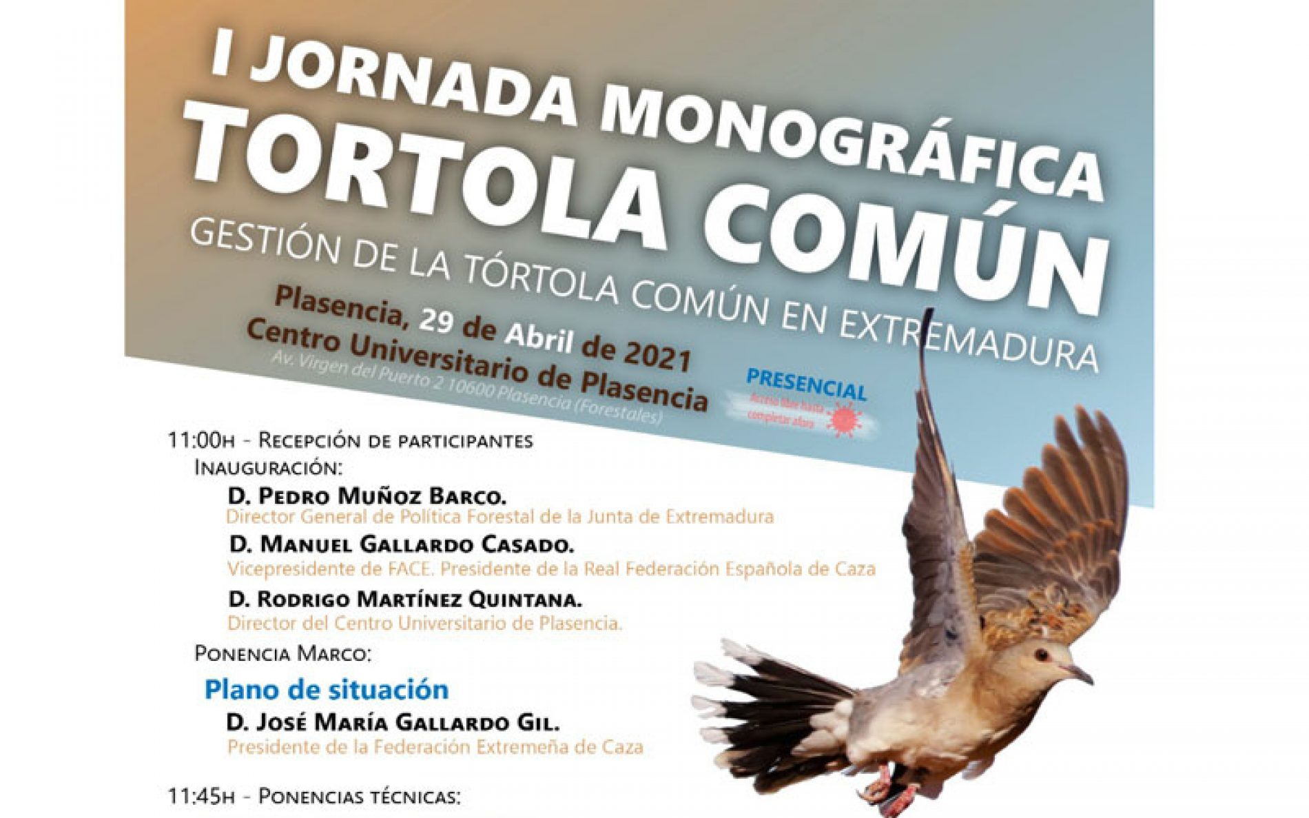 Plasencia acogerá la I Jornada Monográfica sobre la Tórtola Común