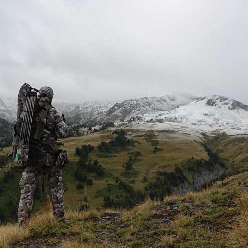 Gamos de montaña, un reto para el arquero