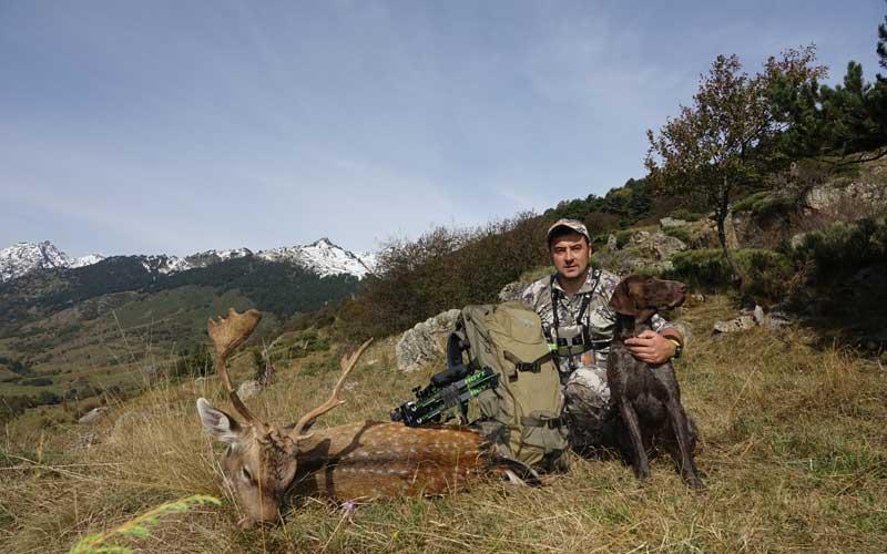 caza gamo con arco