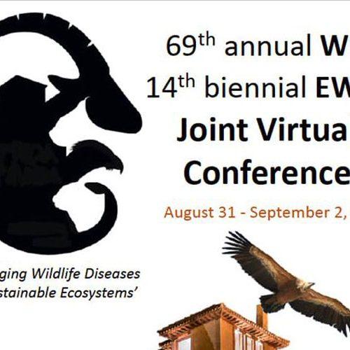 El próximo Congreso Internacional de Salud y Conservación de Fauna Silvestre será virtual
