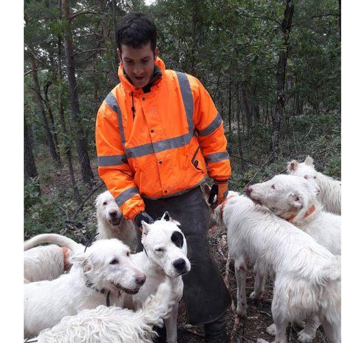 La AER demanda un uso racional y eficiente de los perros en la orden de vedas 2021/2022 de Navarra