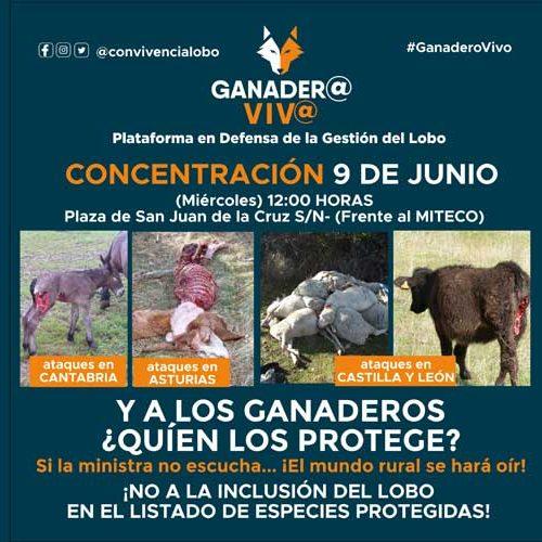Movilización contra la protección del lobo el 9 de junio en Madrid