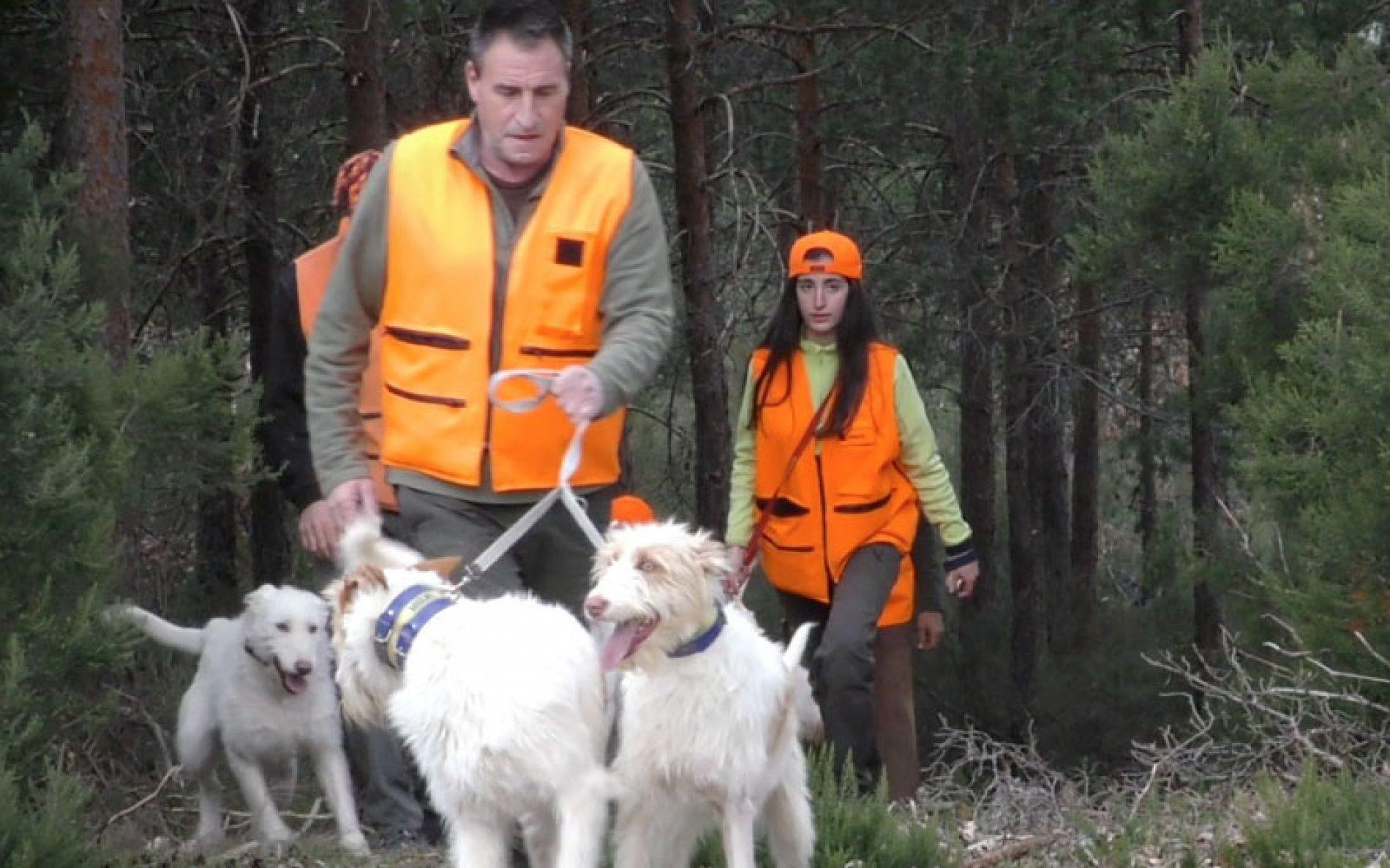 """ARRECAL señala que la Ley de Bienestar Animal de Andalucía es """"una cesión ante el animalismo radical"""""""