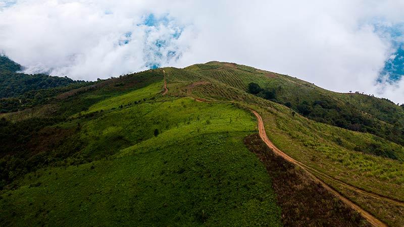 Caminos del monte