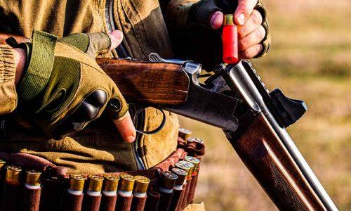 El plomo y la caza, claves para reducir la exposición a este metal.