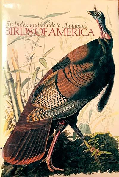 Guía de aves de América