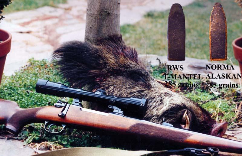 Rifle-para-aguardo