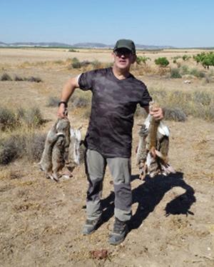 Conejos de descaste