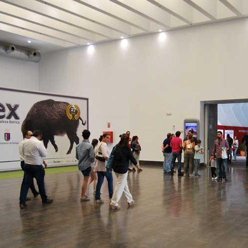 FECIEX celebra su 30º. aniversario del 16 al 19 de septiembre en Badajoz