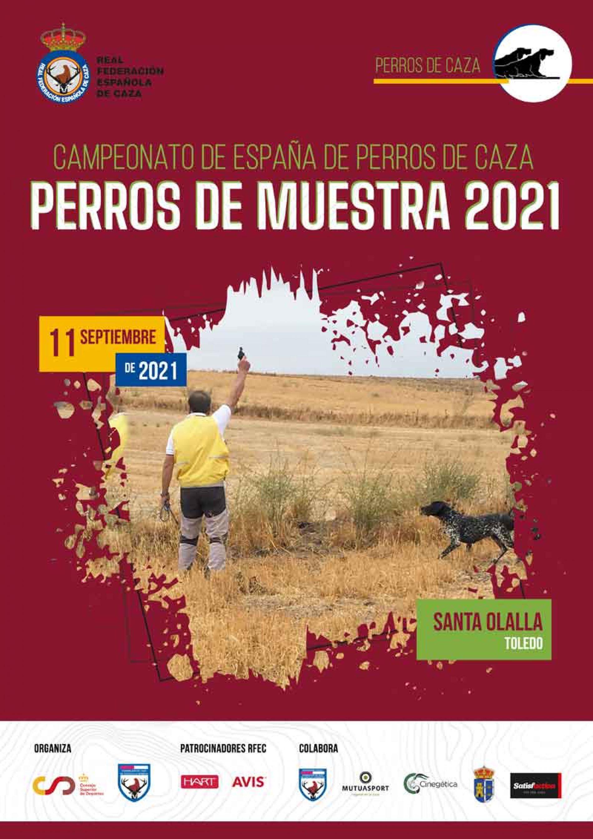 Campeonato de España de Perros de Muestra – Perros de Caza 2021, el 11 de septiembre en Santa Olalla